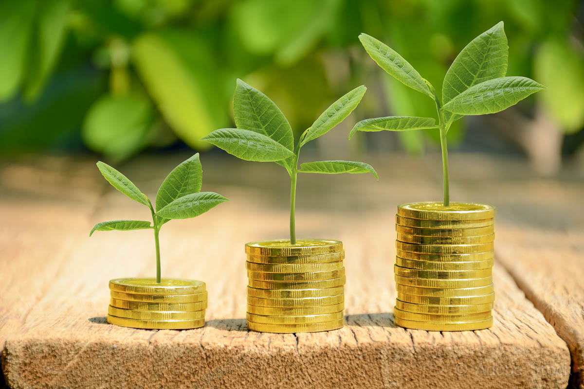 Investment, money, interest and financial concept.